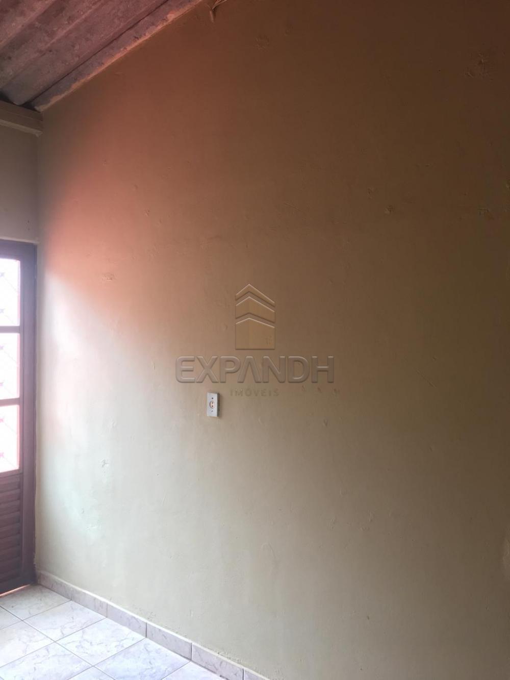 Alugar Casas / Padrão em Sertãozinho apenas R$ 400,00 - Foto 8