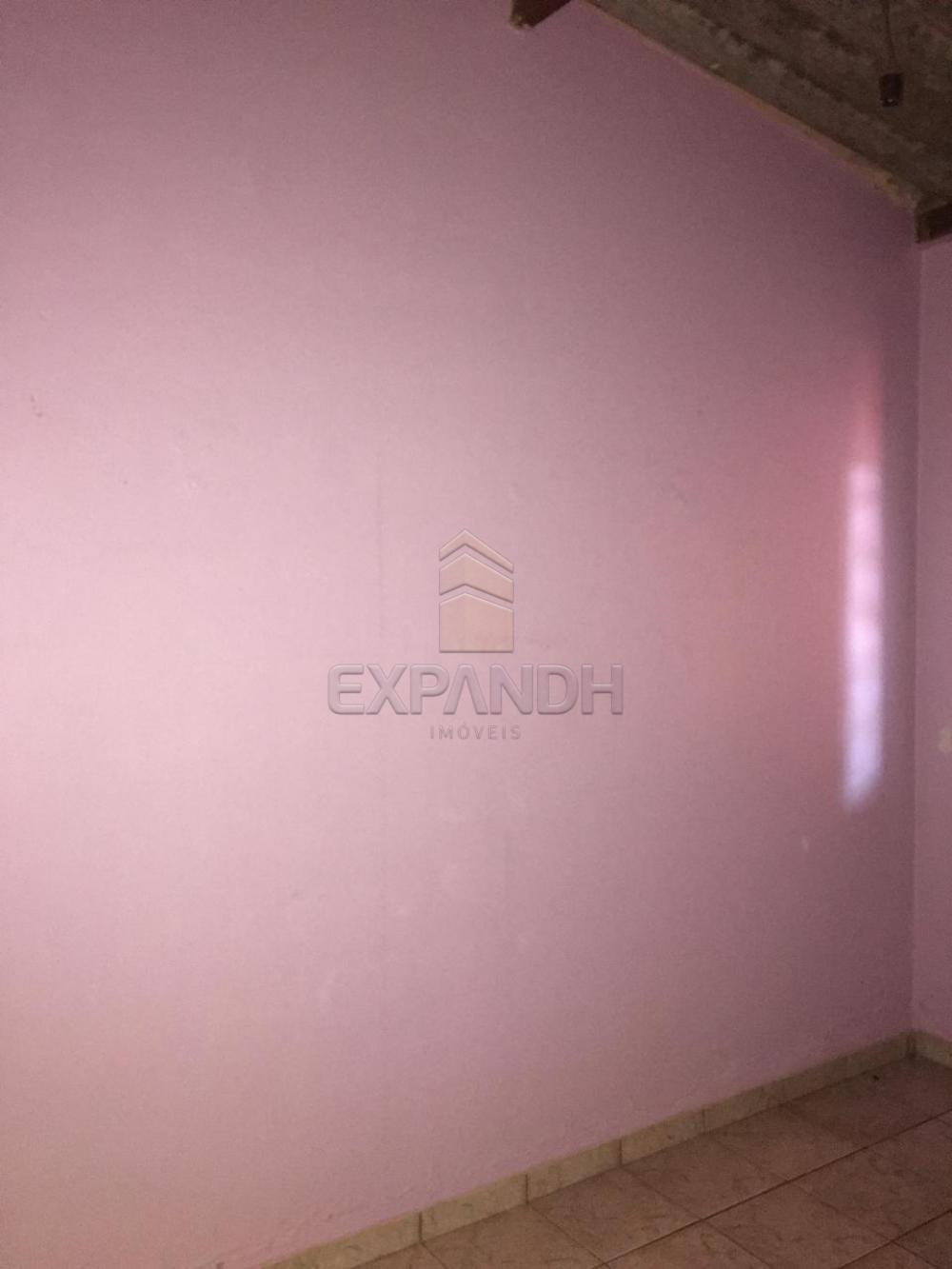 Alugar Casas / Padrão em Sertãozinho apenas R$ 400,00 - Foto 18