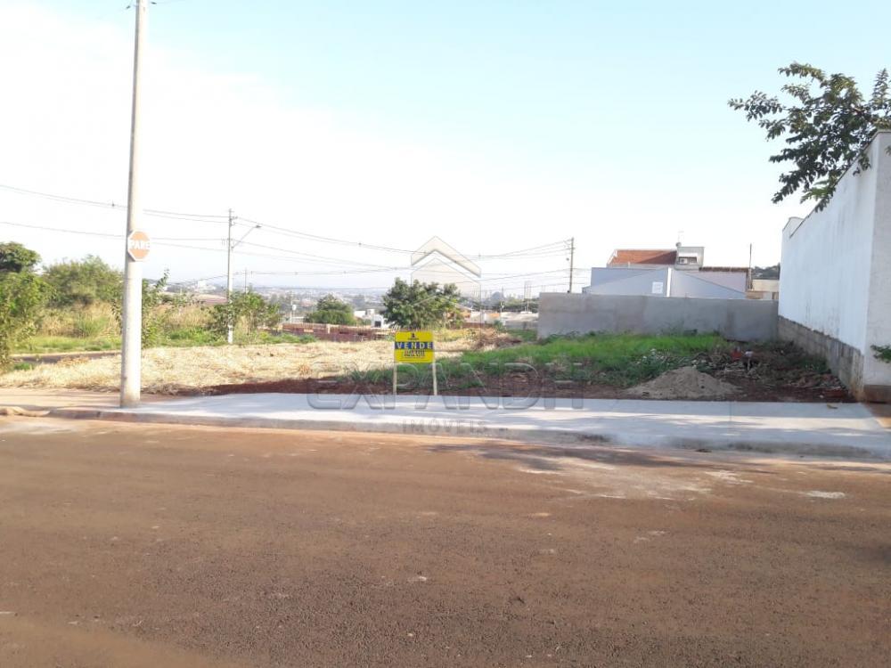 Comprar Terrenos / Padrão em Sertãozinho apenas R$ 95.000,00 - Foto 1