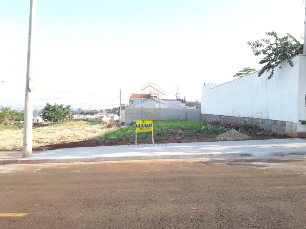 Comprar Terrenos / Padrão em Sertãozinho apenas R$ 95.000,00 - Foto 2