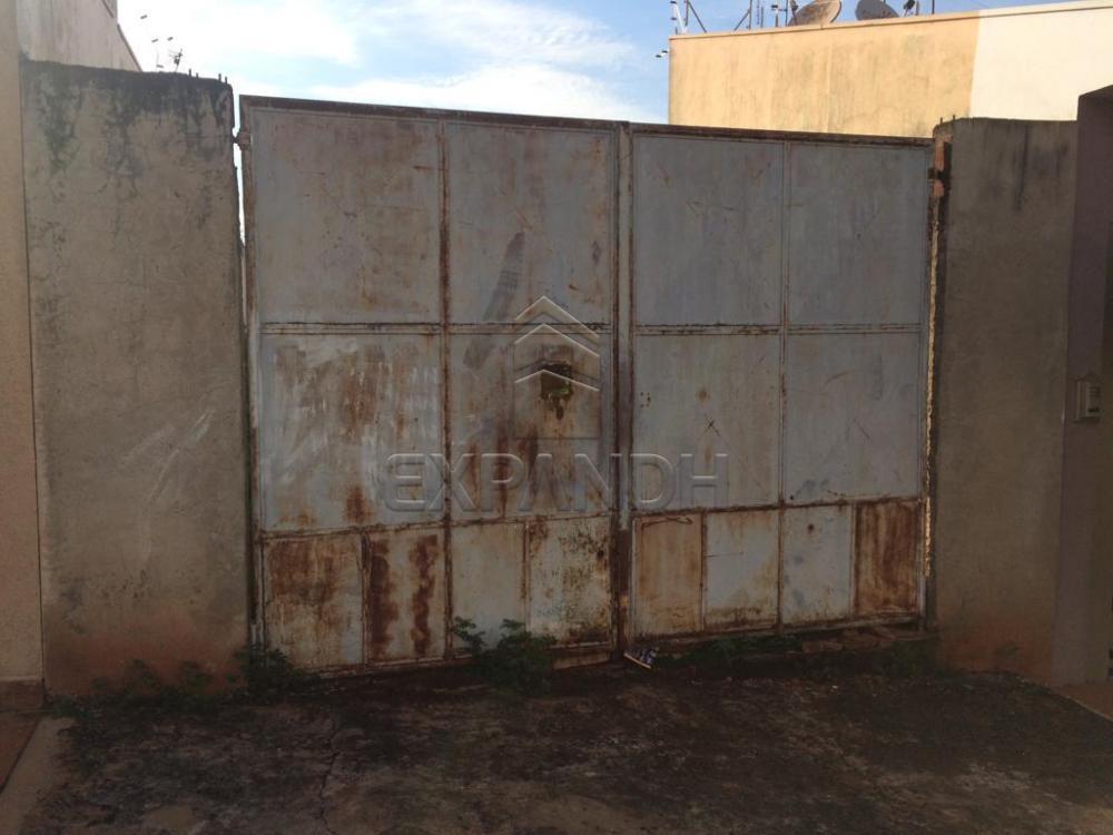 Alugar Terrenos / Padrão em Sertãozinho R$ 500,00 - Foto 1