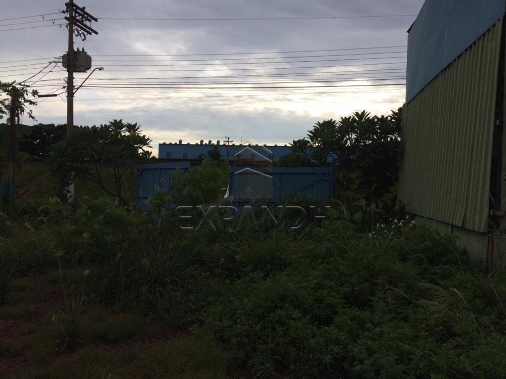 Alugar Comerciais / Barracão em Sertãozinho apenas R$ 5.000,00 - Foto 6