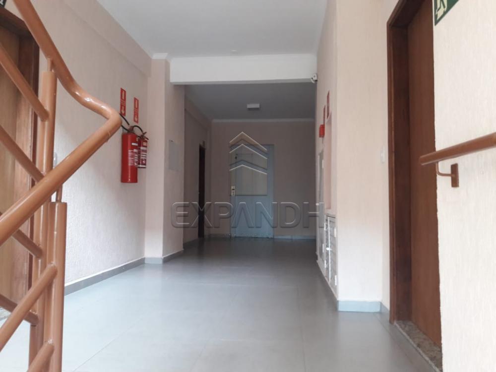 Comprar Apartamentos / Padrão em Sertãozinho R$ 280.000,00 - Foto 5