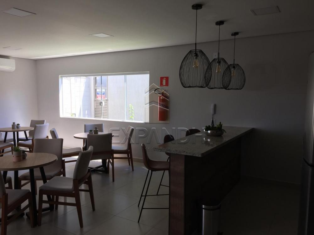 Alugar Apartamentos / Padrão em Sertãozinho R$ 600,00 - Foto 29
