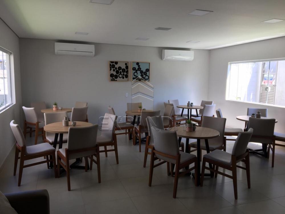 Alugar Apartamentos / Padrão em Sertãozinho R$ 600,00 - Foto 30