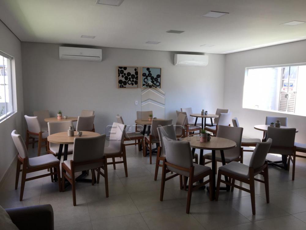 Alugar Apartamentos / Padrão em Sertãozinho R$ 600,00 - Foto 31