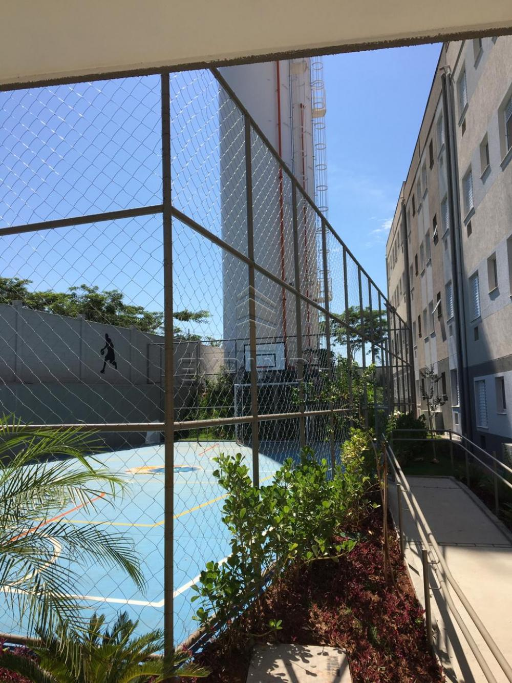 Alugar Apartamentos / Padrão em Sertãozinho R$ 600,00 - Foto 41