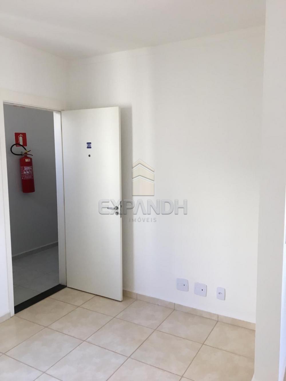 Alugar Apartamentos / Padrão em Sertãozinho R$ 600,00 - Foto 5