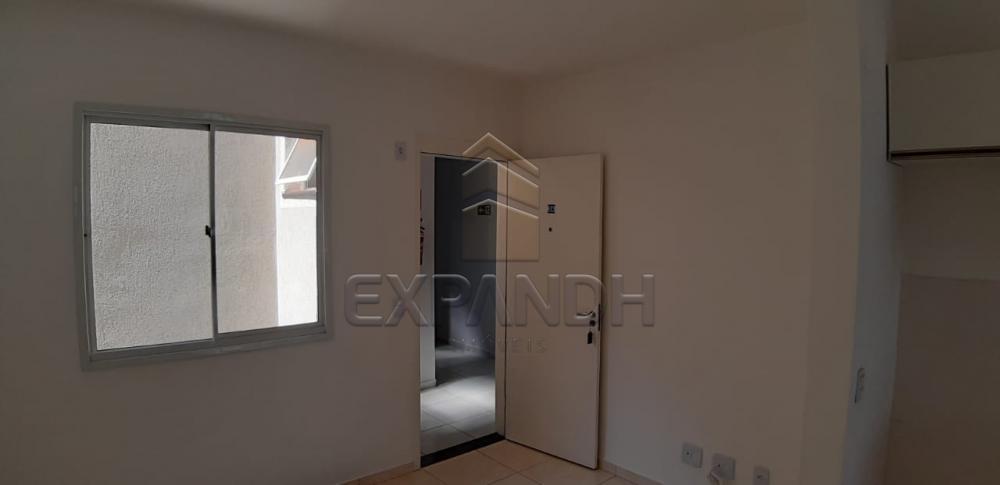 Alugar Apartamentos / Padrão em Sertãozinho R$ 650,00 - Foto 23