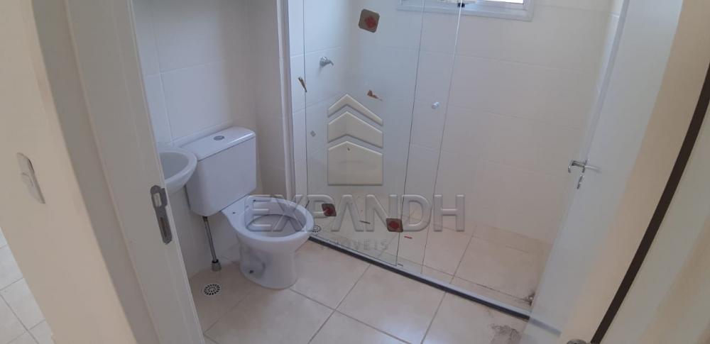 Alugar Apartamentos / Padrão em Sertãozinho R$ 650,00 - Foto 16