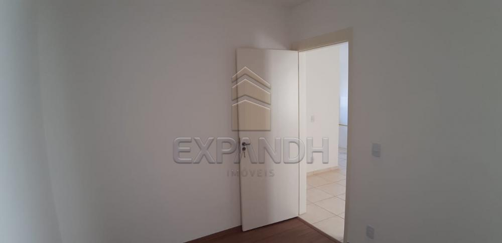 Alugar Apartamentos / Padrão em Sertãozinho apenas R$ 650,00 - Foto 16