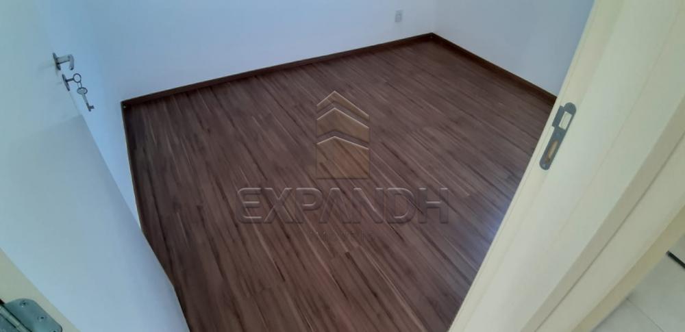 Alugar Apartamentos / Padrão em Sertãozinho apenas R$ 650,00 - Foto 17