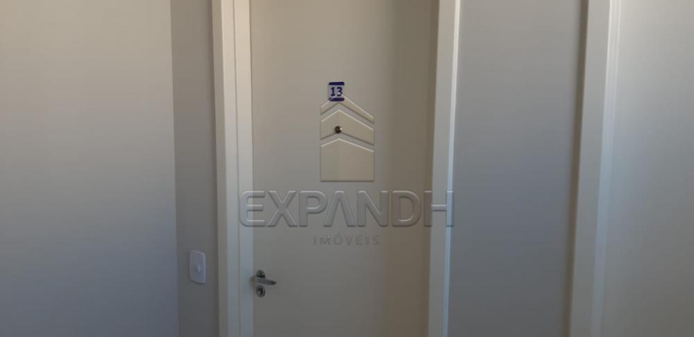 Alugar Apartamentos / Padrão em Sertãozinho R$ 650,00 - Foto 5