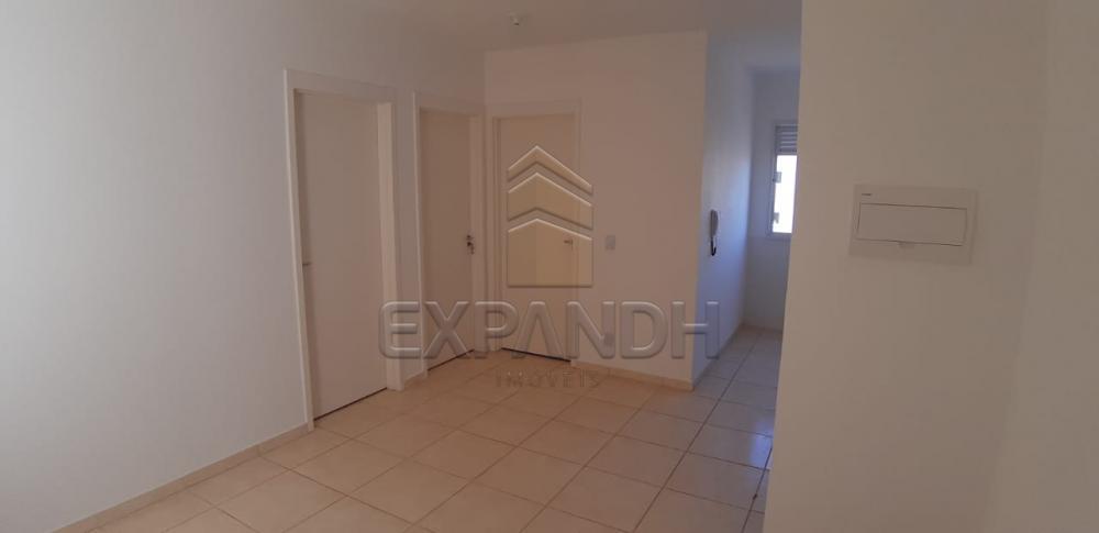 Alugar Apartamentos / Padrão em Sertãozinho R$ 650,00 - Foto 6