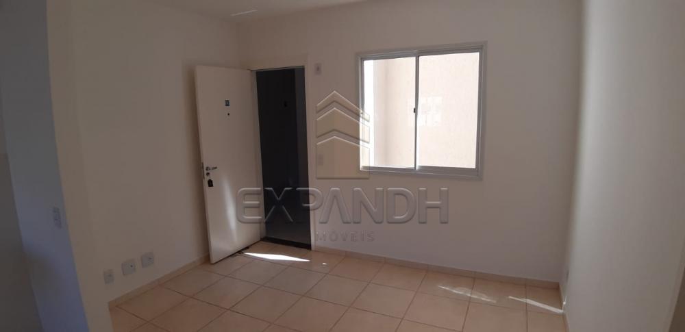 Alugar Apartamentos / Padrão em Sertãozinho R$ 650,00 - Foto 7