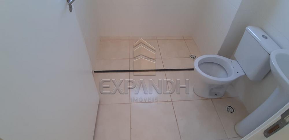 Alugar Apartamentos / Padrão em Sertãozinho R$ 650,00 - Foto 12