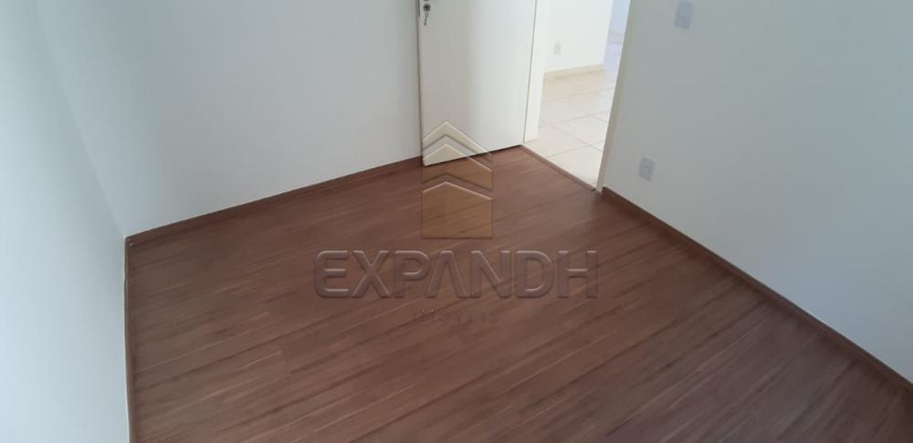 Alugar Apartamentos / Padrão em Sertãozinho R$ 650,00 - Foto 15