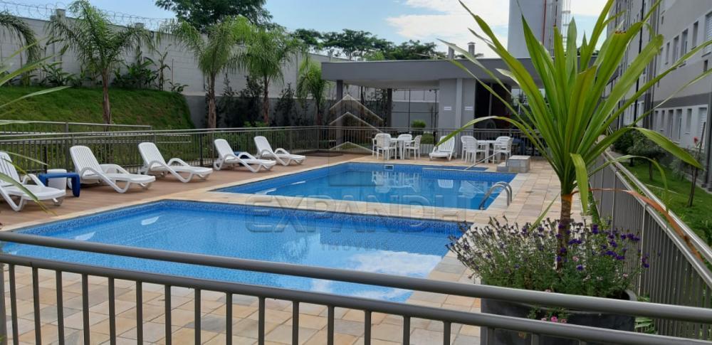 Alugar Apartamentos / Padrão em Sertãozinho R$ 650,00 - Foto 28