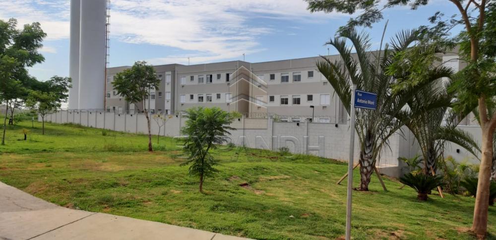 Alugar Apartamentos / Padrão em Sertãozinho apenas R$ 650,00 - Foto 3
