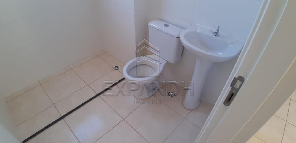 Alugar Apartamentos / Padrão em Sertãozinho apenas R$ 650,00 - Foto 10