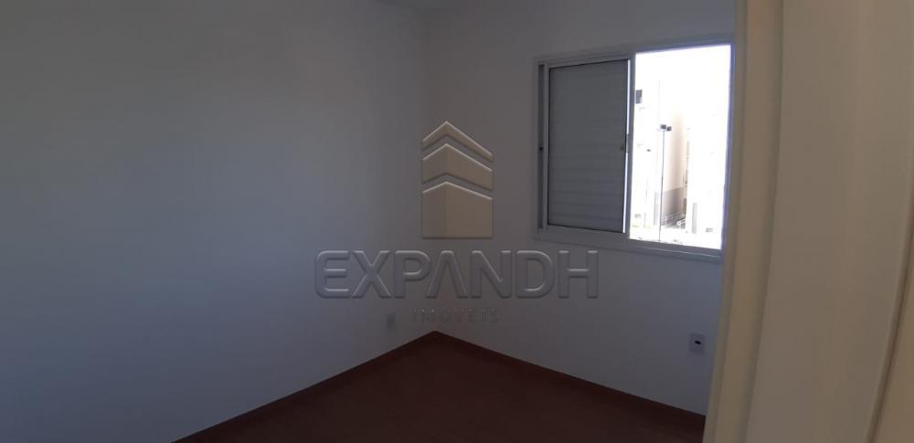 Alugar Apartamentos / Padrão em Sertãozinho apenas R$ 650,00 - Foto 18