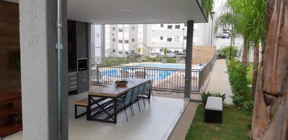 Alugar Apartamentos / Padrão em Sertãozinho apenas R$ 650,00 - Foto 24