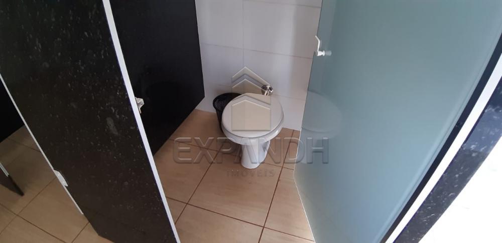 Alugar Comerciais / Salão em Sertãozinho apenas R$ 2.600,00 - Foto 10