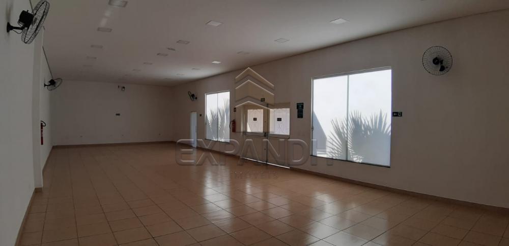 Alugar Comerciais / Salão em Sertãozinho apenas R$ 2.600,00 - Foto 16