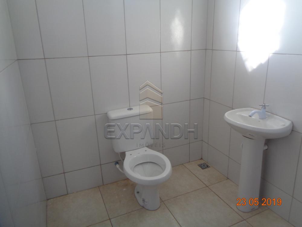 Alugar Comerciais / Barracão em Sertãozinho apenas R$ 1.650,00 - Foto 12