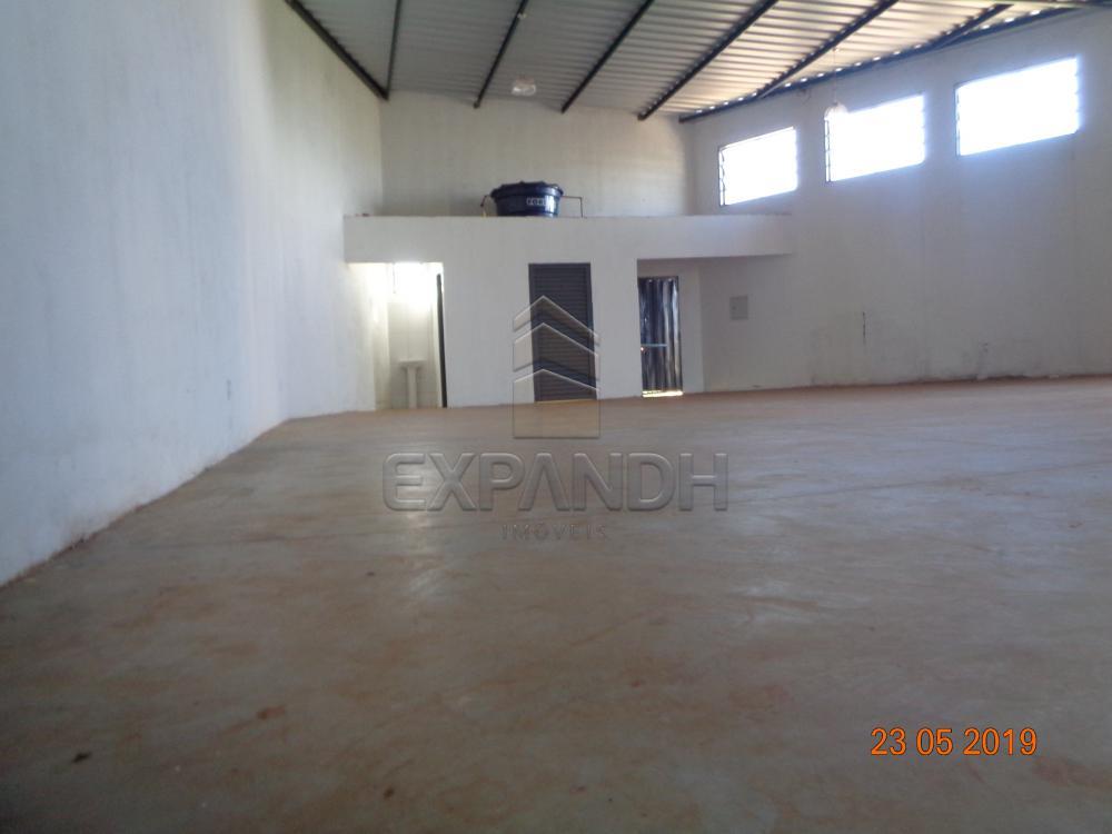 Alugar Comerciais / Barracão em Sertãozinho apenas R$ 1.650,00 - Foto 8