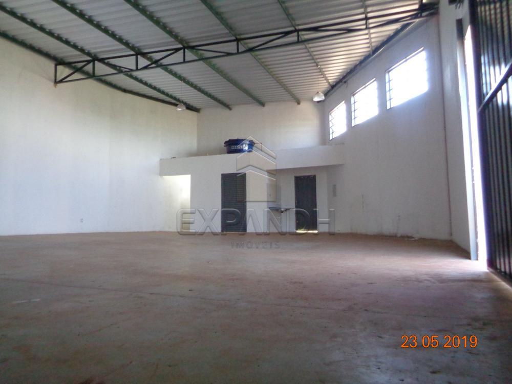 Alugar Comerciais / Barracão em Sertãozinho apenas R$ 1.650,00 - Foto 5