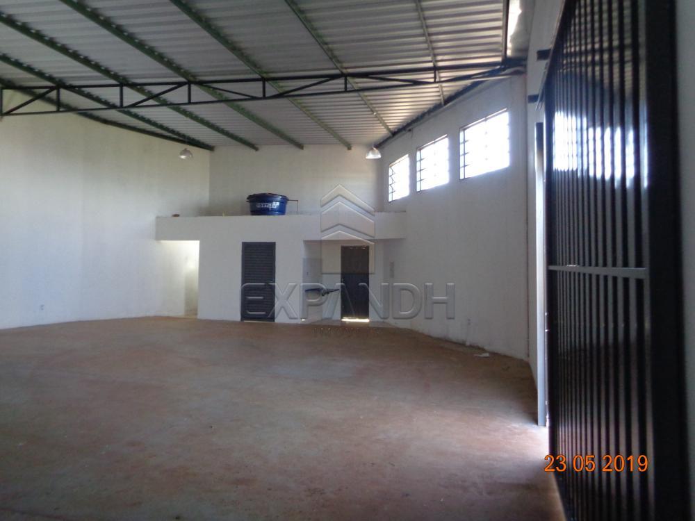 Alugar Comerciais / Barracão em Sertãozinho apenas R$ 1.650,00 - Foto 4