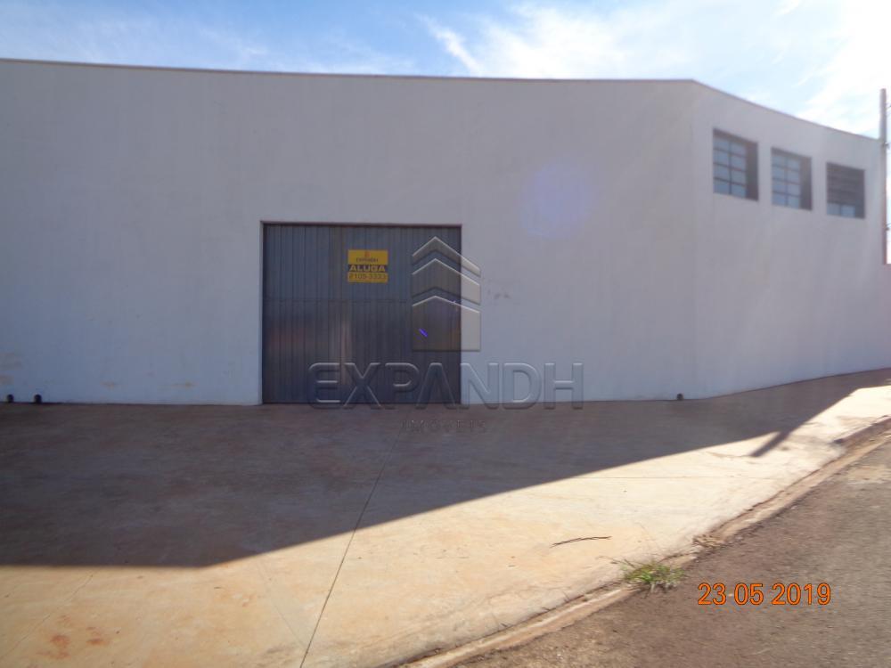 Alugar Comerciais / Barracão em Sertãozinho apenas R$ 1.650,00 - Foto 1