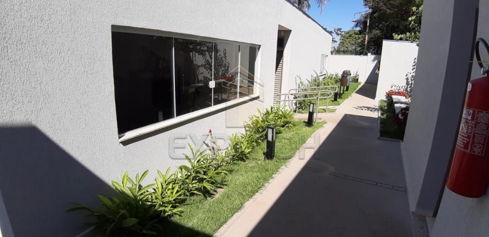 Alugar Apartamentos / Padrão em Sertãozinho apenas R$ 600,00 - Foto 12