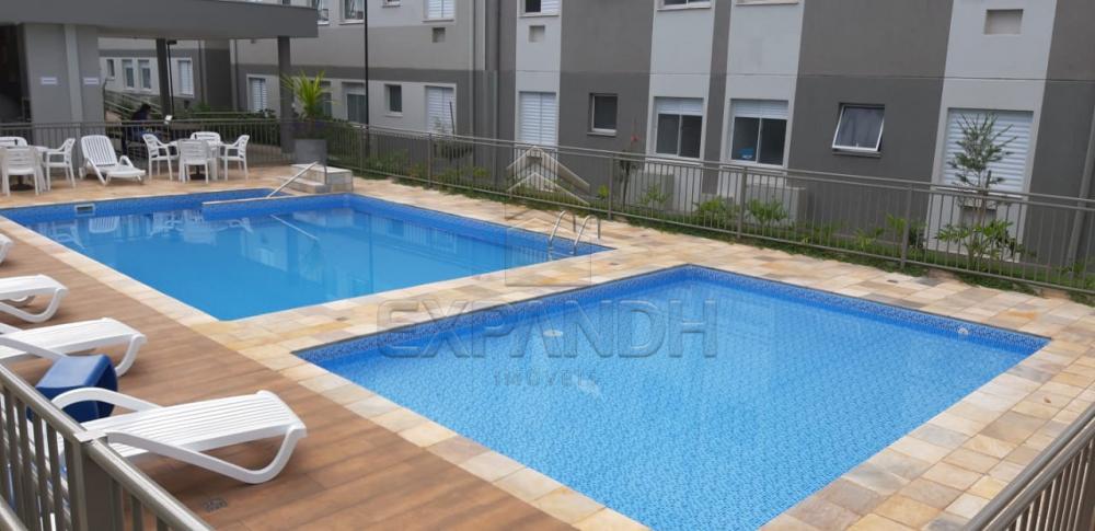 Alugar Apartamentos / Padrão em Sertãozinho apenas R$ 600,00 - Foto 10