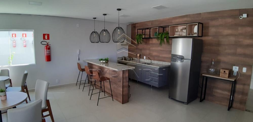 Alugar Apartamentos / Padrão em Sertãozinho apenas R$ 600,00 - Foto 17