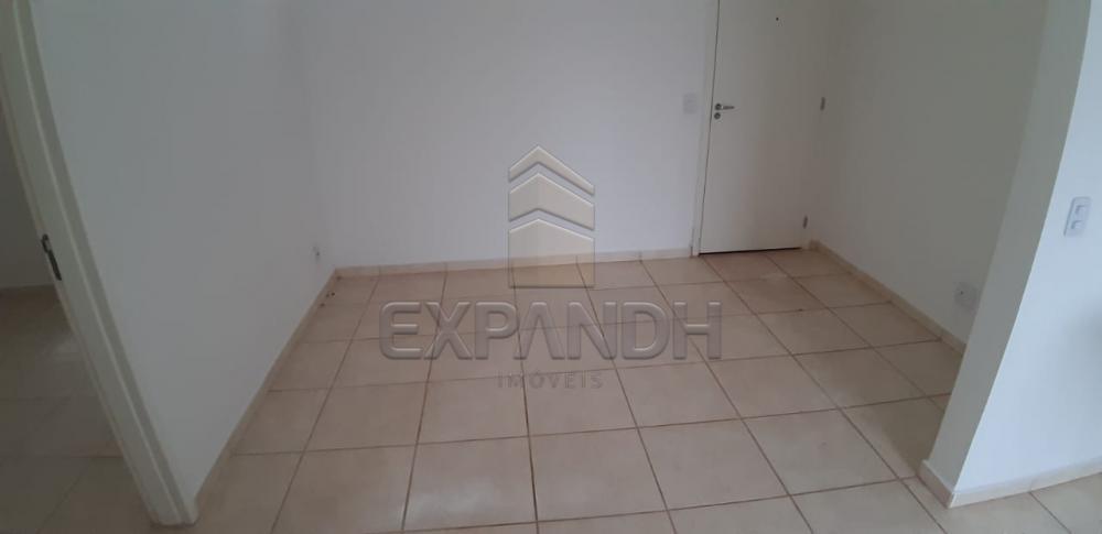 Alugar Apartamentos / Padrão em Sertãozinho apenas R$ 600,00 - Foto 21