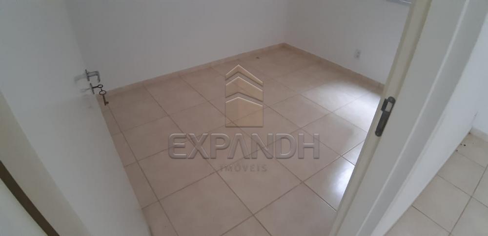 Alugar Apartamentos / Padrão em Sertãozinho apenas R$ 600,00 - Foto 23