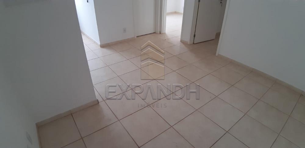 Alugar Apartamentos / Padrão em Sertãozinho apenas R$ 600,00 - Foto 24