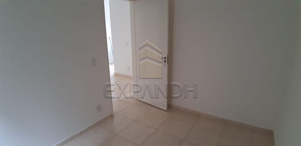 Alugar Apartamentos / Padrão em Sertãozinho apenas R$ 600,00 - Foto 25