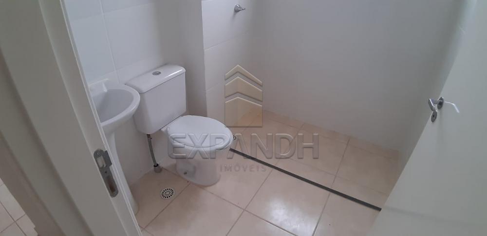 Alugar Apartamentos / Padrão em Sertãozinho apenas R$ 600,00 - Foto 30
