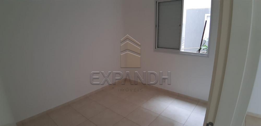 Alugar Apartamentos / Padrão em Sertãozinho apenas R$ 600,00 - Foto 31