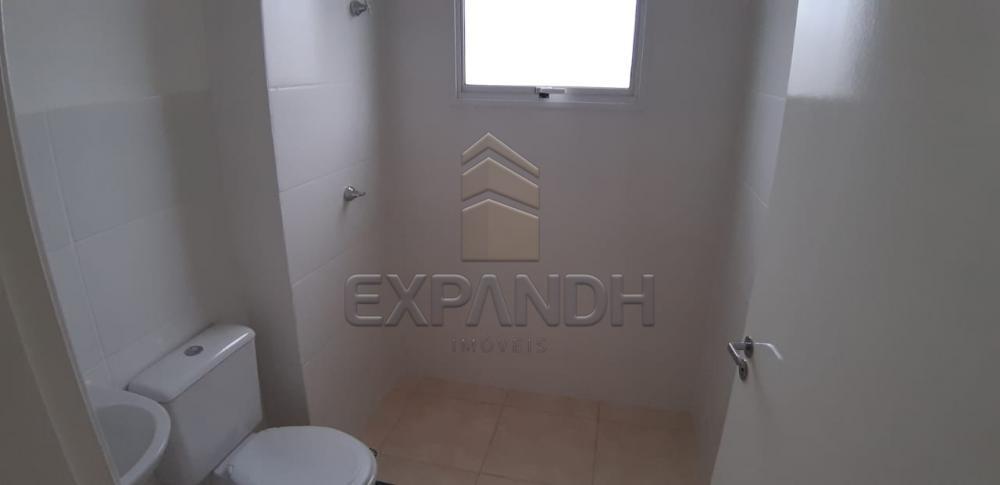 Alugar Apartamentos / Padrão em Sertãozinho apenas R$ 600,00 - Foto 32