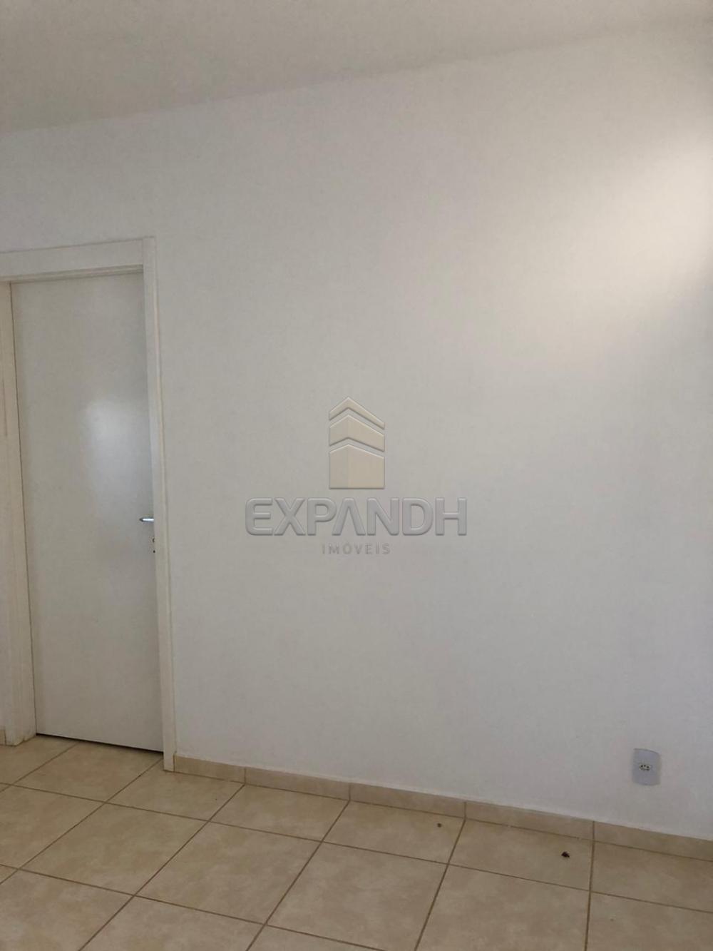 Alugar Apartamentos / Padrão em Sertãozinho apenas R$ 600,00 - Foto 35