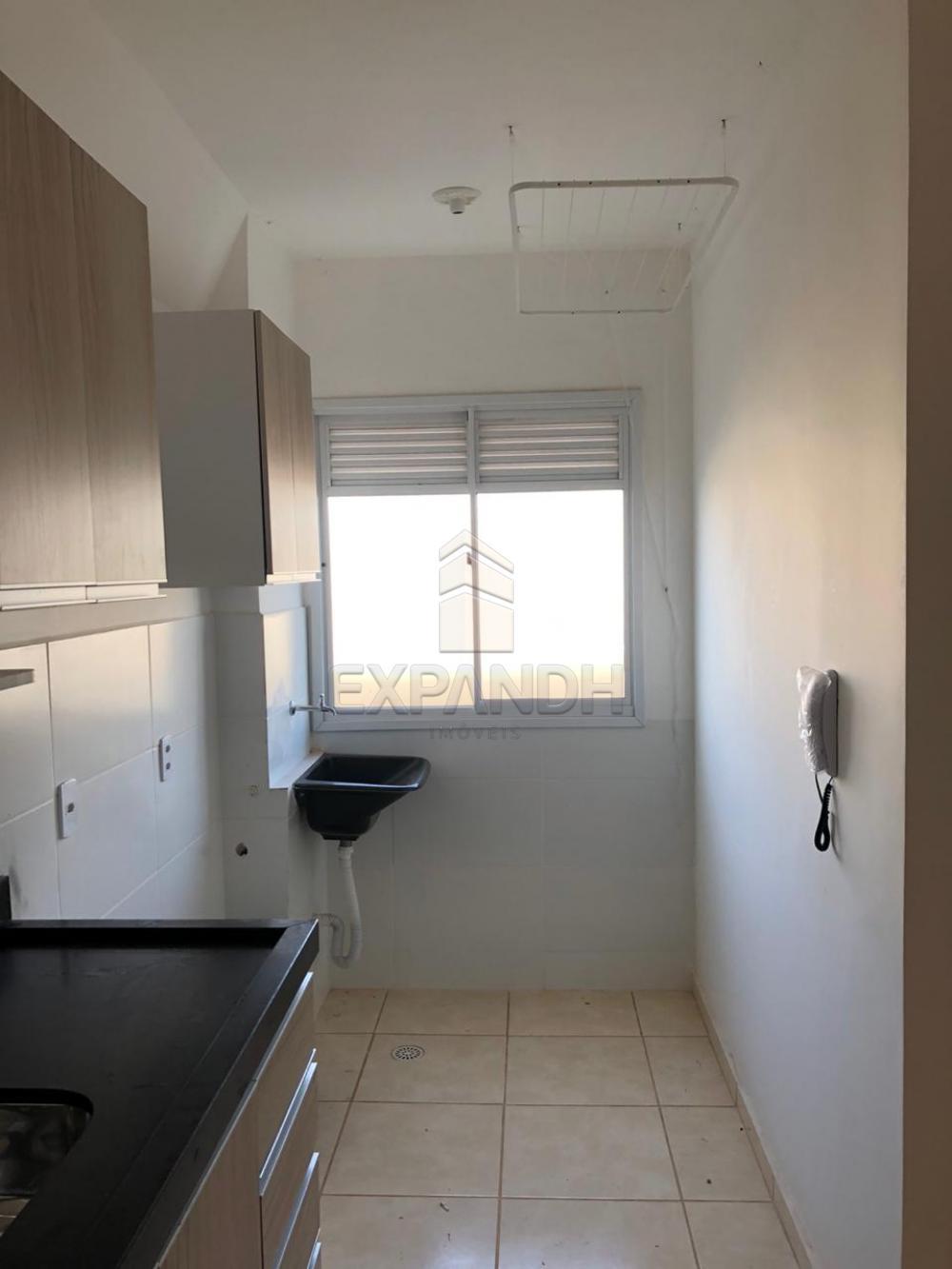 Alugar Apartamentos / Padrão em Sertãozinho apenas R$ 600,00 - Foto 36