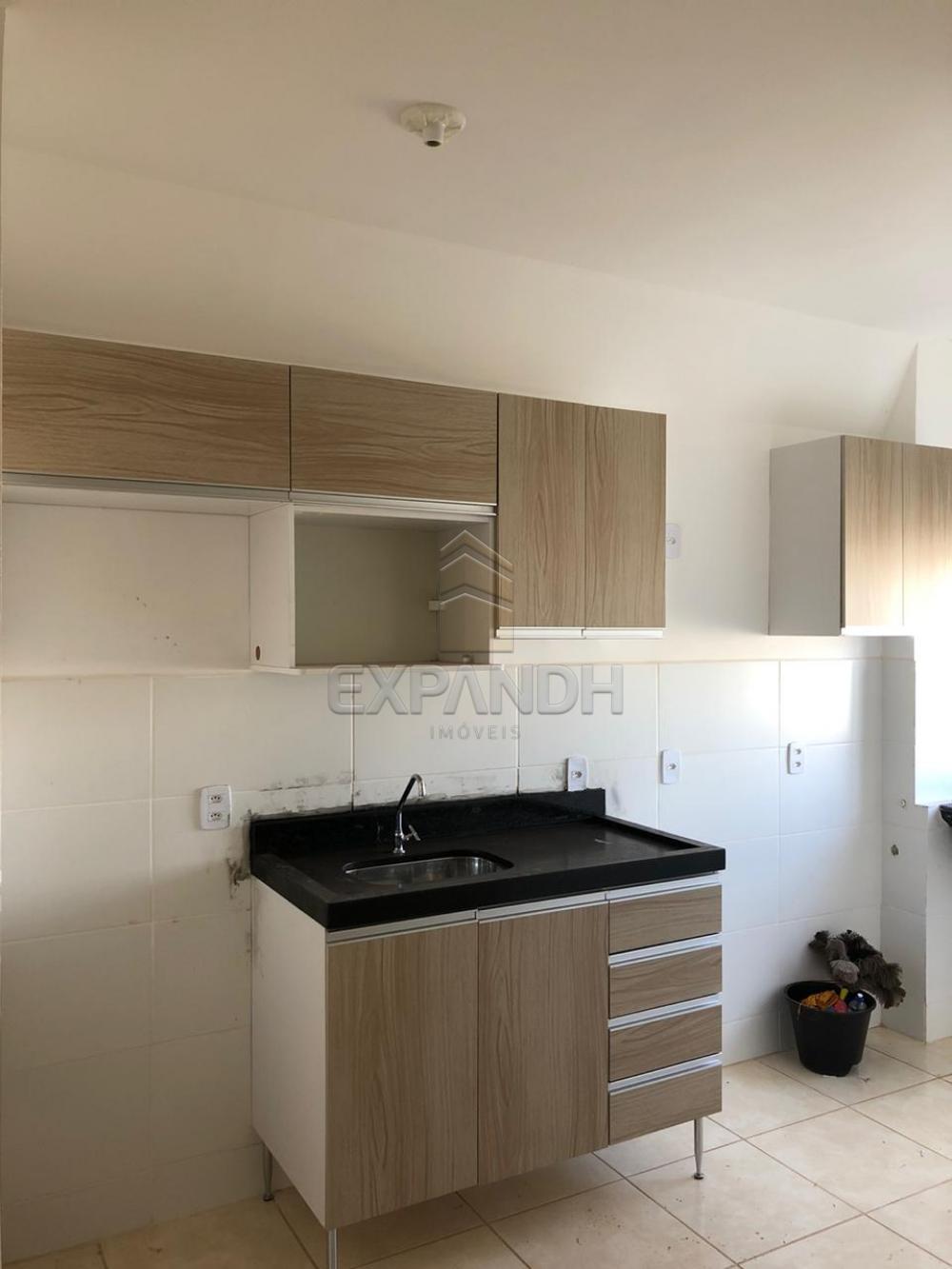 Alugar Apartamentos / Padrão em Sertãozinho apenas R$ 600,00 - Foto 37