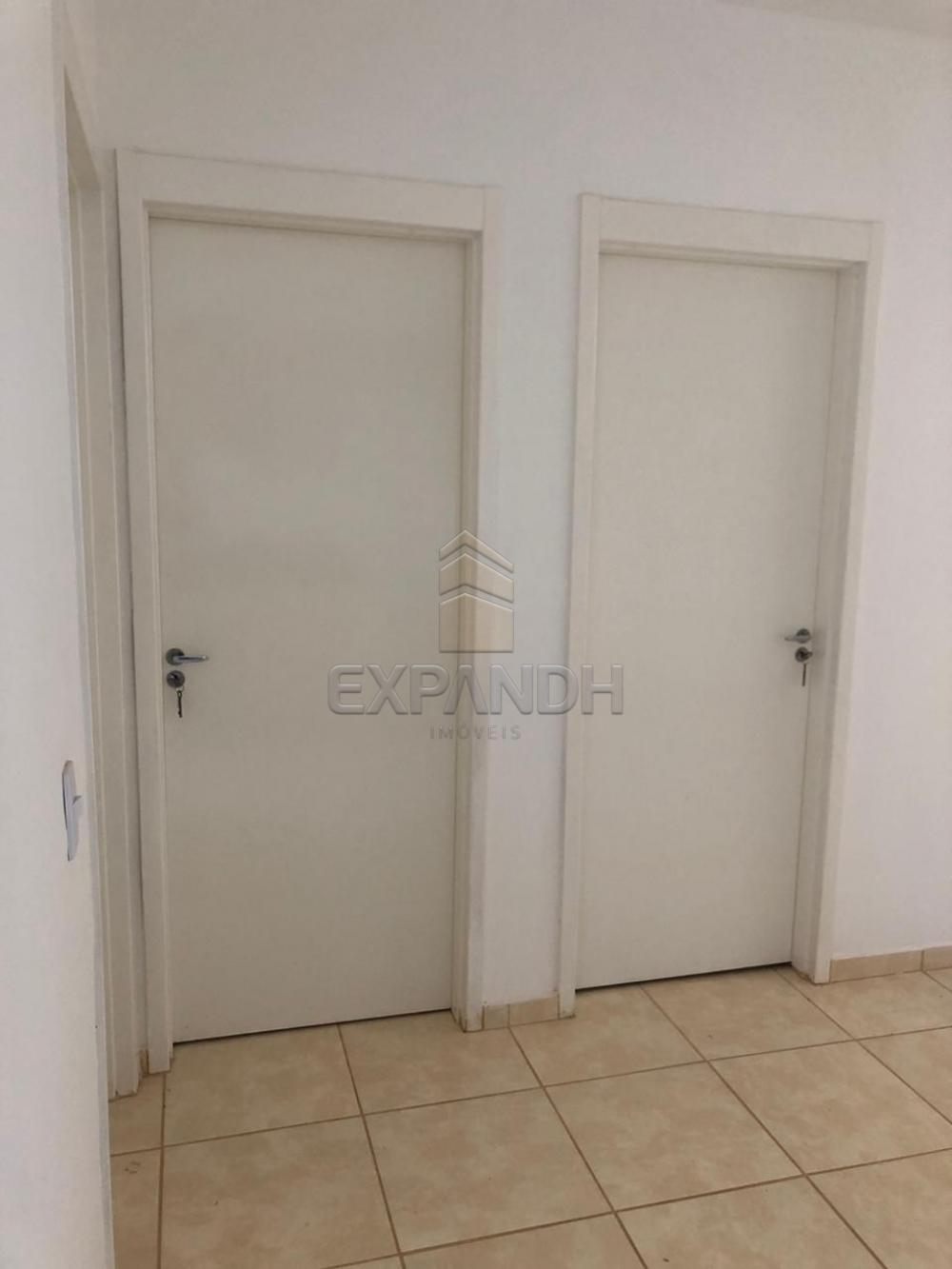 Alugar Apartamentos / Padrão em Sertãozinho apenas R$ 600,00 - Foto 39