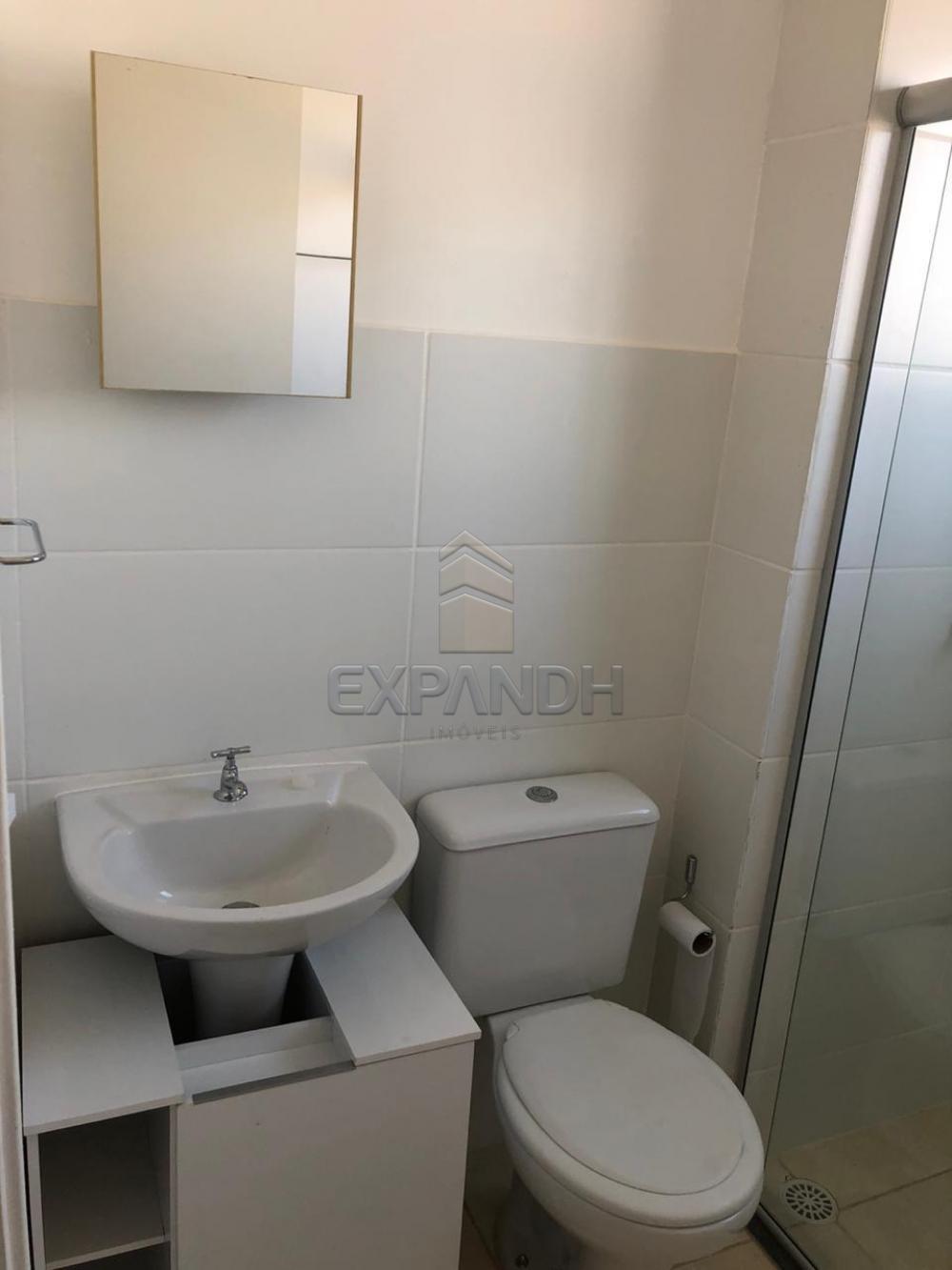 Alugar Apartamentos / Padrão em Sertãozinho apenas R$ 600,00 - Foto 44