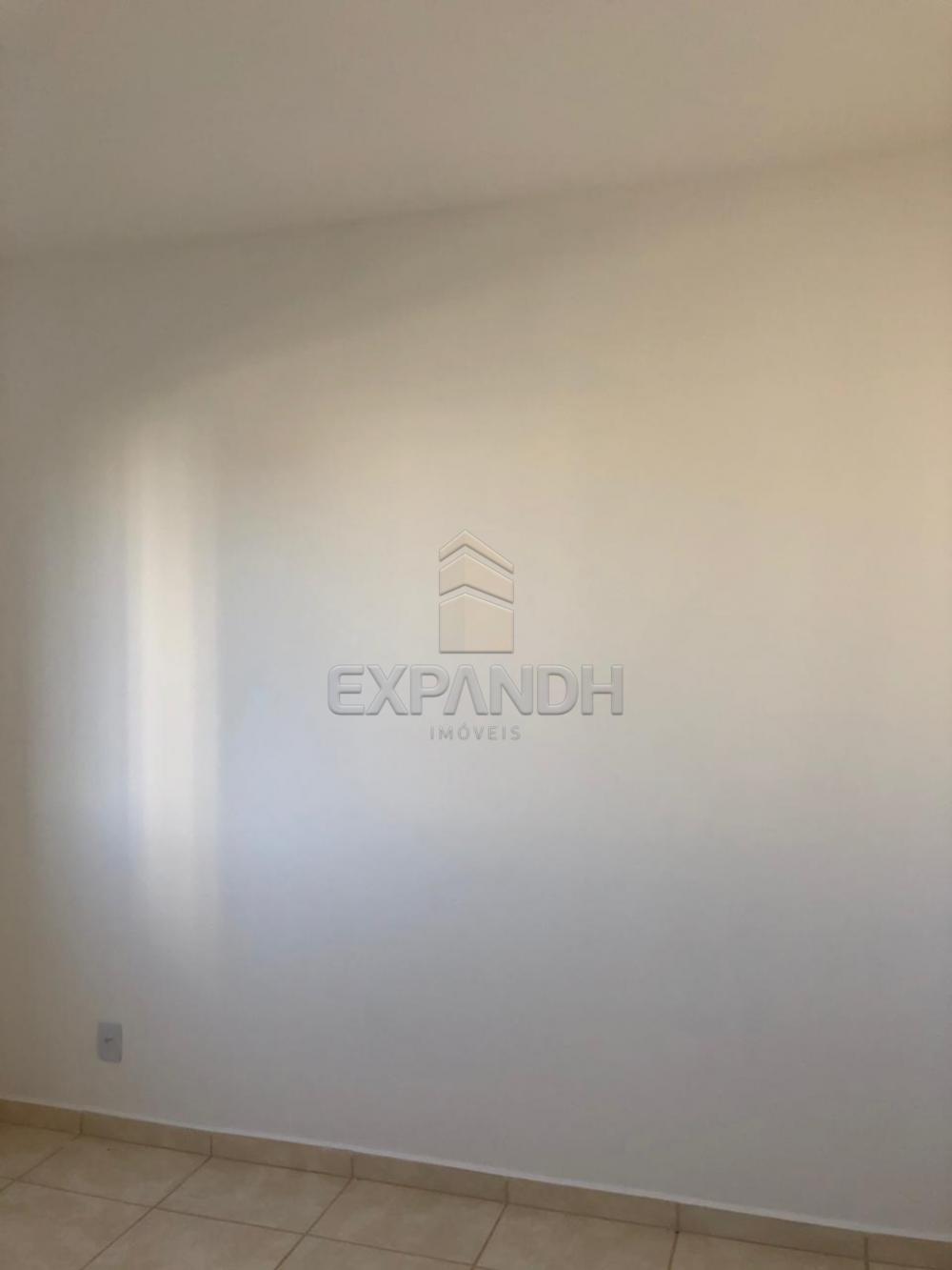 Alugar Apartamentos / Padrão em Sertãozinho apenas R$ 600,00 - Foto 45