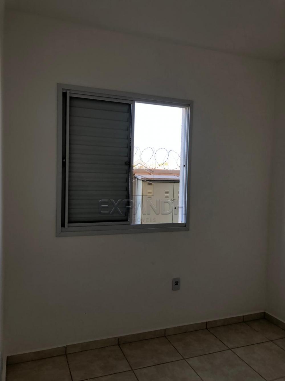 Alugar Apartamentos / Padrão em Sertãozinho apenas R$ 600,00 - Foto 46